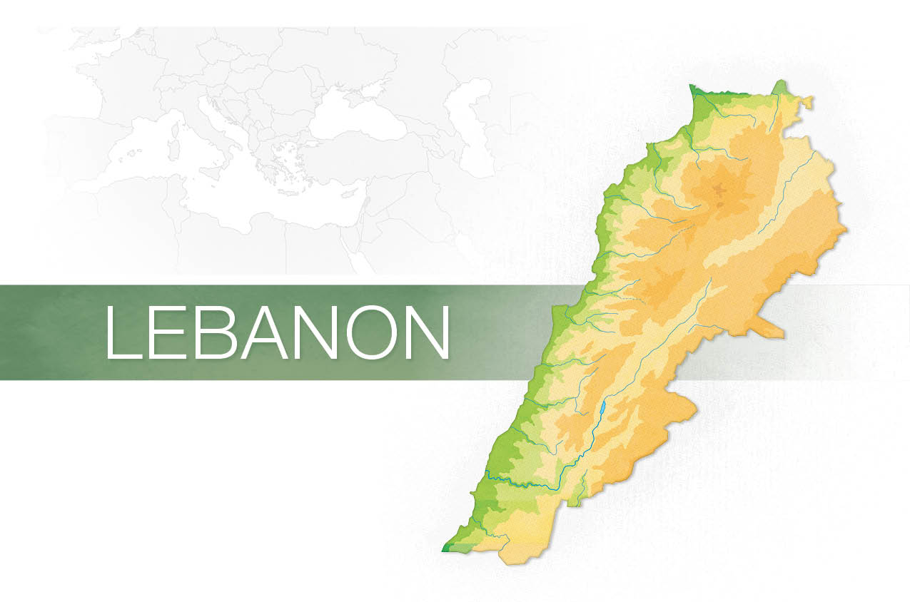 perCon_V7N1_lebanon