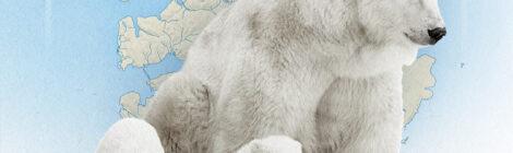 Свалбард «Ахиллесова пята» НАТО в Арктике