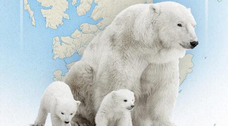 Svalbard: NATO's Arctic 'Achilles' Heel'